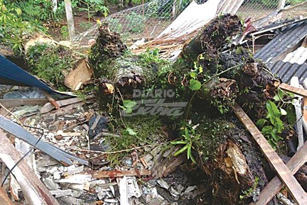 Alerta de emergencias en Florianópolis por fuertes lluvias