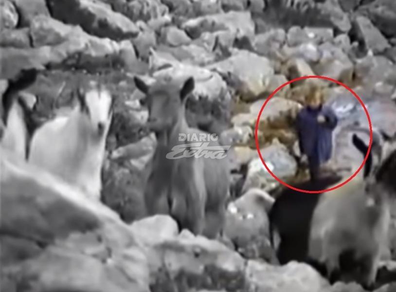 Modric, de pastor de ovejas a figura del mundo